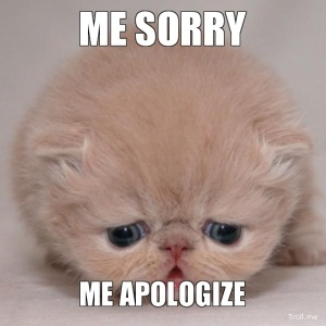 me-sorry-me-apologize